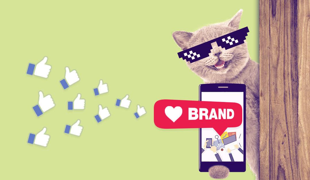 Branding para clínicas y médicos veterinarios